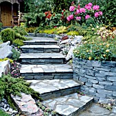 NATURAL DRY STONE RETAINING WALL WITH STEPS TO SUMMER HOUSE, RHODODENDRON,  ROSES CONIFERS AND SHRUBS.