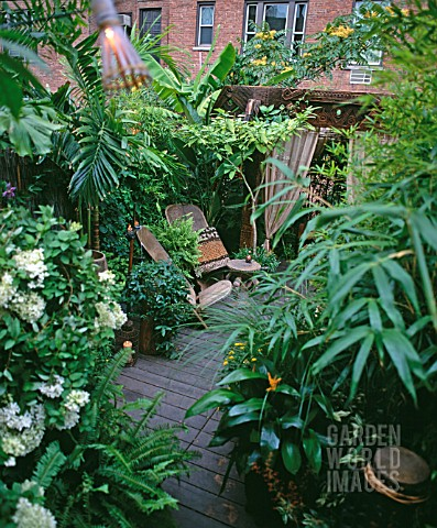 URBAN_JUNGLE_GARDEN