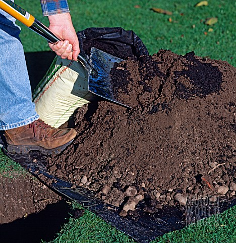 STEP_BY_STEP_3_OF_9_TREE_PLANTING_MIXING_COMPOST_AND_SOIL