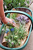 CUT SUMMER FLOWERS IN TRUG