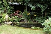 POND WITH FOUNTAIN AND WATER FEATURE