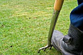 AERATING A LAWN