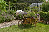 GARDEN VIEW, PLANTED WHEELBARROW, NGS OPEN DAY, HATCH ROAD