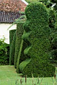 ROW OF SHAPES IN YEW (TAXUS BACCATA). TOPIARY GARDEN
