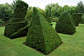LEANING PYRAMID & TATLINS TOWER (ORIGINAL DESIGNED BY VLADIMIR TATLIN)  IN YEW (TAXUS BACCATA)
