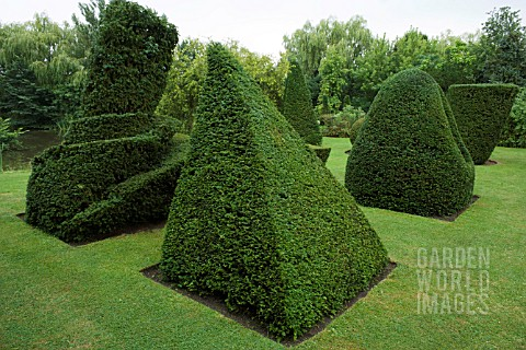 LEANING_PYRAMID__TATLINS_TOWER_ORIGINAL_DESIGNED_BY_VLADIMIR_TATLIN__IN_YEW_TAXUS_BACCATA