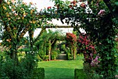 PERGOLAS WITH CLIMBING ROSES & CLEMATIS AT MISARDEN PARK GARDENS