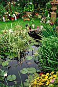 POND IN SMALL GARDEN