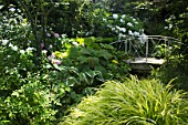 Little bridge in a garden surronding by Hostas, Hakonechloea, Phlox paniculata, Rodgersia, Hydrangea