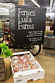 Strawberry warehouse order preparation. Lufa Farms. Montreal. Province of Quebec. Canada