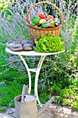 Basket of assorted vegetables; tomatoes, peppers, lettuce, zucchini, potatoes, and wooden shoes, zinc watering can on a table