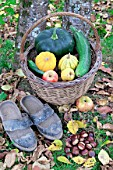Basket of various autumn vegetables: pumpkin, zucchini, apples, walnuts, chestnuts and pair of shoes