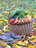 Basket of various autumn vegetables: pumpkin, zucchini, peppers, carrots, pairs of shoes.