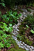 River pebbles lined with Darmera peltata, Luzula sylvatica and Bergenia
