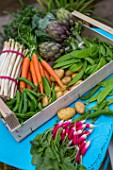 Spring vegetables on a garden terrace: carrots, aspargus, radish, artichokes, salad, peas, snow peas - France