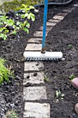 Sowing a lawn on a garden path