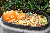Halloween pumpkin decoration for composting