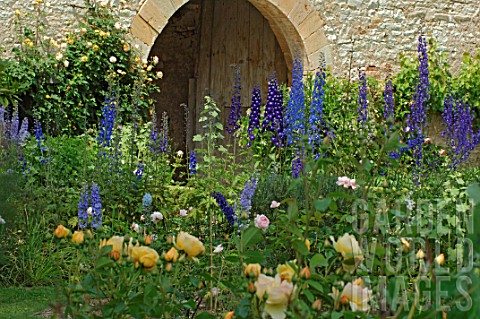 Roses_and_Delphinium_in_border_at_Jardin_de_Cormatin_France