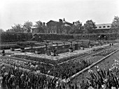 THE SUNKEN GARDEN AT KENSINGTON PALACE, WHICH WAS PLANTED IN 1908.