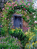 A ROSE COVERED PERGOLA FRAMES A WOODEN DOOR IN THE GARDEN AT CAMBO HOUSE.
