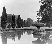 THE CENTRE FOUNTAIN IN THE GARDEN AT APLEY PARK, WITH A LINE OF CUPRESSUS TREES.