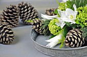 ARRANGEMENT WITH EUCHARIS, HELLEBORES, TULIPA, VIBURNUM OPULUS AND CUPRESSUS MACROCARPA GOLDCREST, PINUS STROBUS