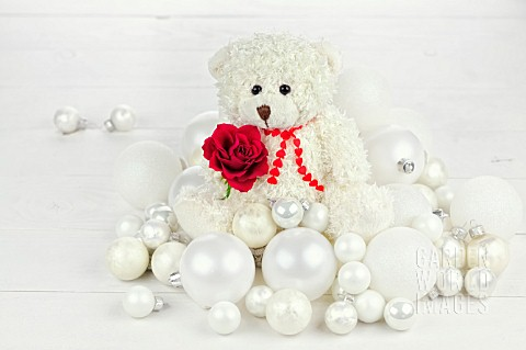 WHITE_BEAR_WITH_RED_ROSE