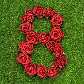 NUMBER 8 IN RED ROSES