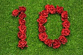 NUMBER 10 IN RED ROSES