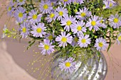BOUQUET OF LILAC BLUE AUTUMN ASTERS
