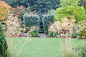 RHS ROSEMOOR GARDEN, DEVON, IN EARLY AUTUMN WITH CLIPPED WHITEBEAM AND ASSORTED TREES IN BACKGROUND, STIPA GIGANTEA SEEDHEADS IN FOREGROUND