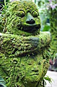 MOSS ENCRUSTED IDOL AT SINGAPORE NATIONAL ORCHID GARDEN