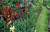 EXOTIC BORDER WITH CANNA AND RICINUS AND LONG CURVING GRASS PATH. THE ARLES WORCESTERSHIRE.