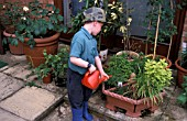 CHILD WATERING HERBS IN CONTAINER