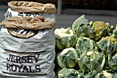 JERSEY ROYAL POTATOES AND CAULIFLOWERS