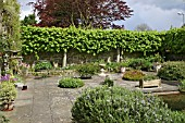 PLEACHED LIMES; ASSORTED PLANTERS AND PATIO; RUTLAND.