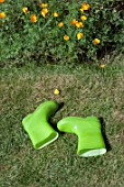 GREEN BOOTS ON GRASS