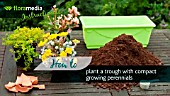 HOW TO: CREATING A PLANTER WITH COMPACT PERENNIALS - STEP BY STEP ACTION VIDEO