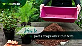 HOW TO: CREATING A HERB PLANTER - STEP BY STEP ACTION VIDEO
