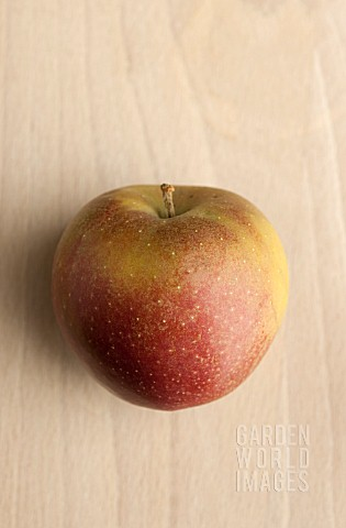 APPLE_GOUDREINETTE
