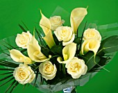 YELLOW FLOWERS IN VASE, (GREEN BACKGROUND)