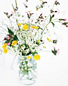 WILD GATHERED FLOWERS IN VASE