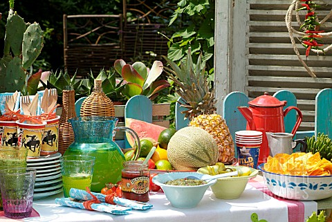 WESTERN_THEMED_GARDEN_PARTY_WITH_FRUIT_AND_SUCCULENTS