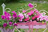 PINK WOODEN BASKET FLOWERBOX WITH IMPATIENS