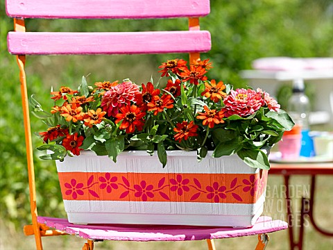 FLOWERBOX_WITH_ZINNIAS