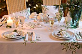MISTLETOE PATTERN PLACE SETTING