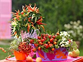 AUTUMNAL FRUITS IN FLOWERPOTS, ROSE HIPS, BERRIES AND CHILLIES