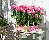 SPRING BALCONY WITH TULIPS