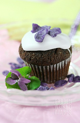 MUFFIN_WITH_GLAZED_VIOLETS