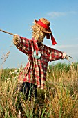 SCARECROW WITH CD AROUND NECK